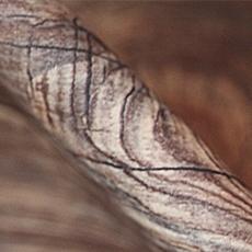 Суперматовая древесная